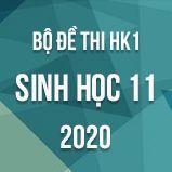 Bộ đề thi HK1 môn Sinh học lớp 11 năm 2020