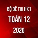 Bộ đề thi HK1 môn Toán 12 năm 2020