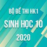 Bộ đề thi HK1 môn Sinh học lớp 10 năm 2020