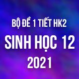 Bộ đề kiểm tra 1 tiết HK2 môn Sinh học lớp 12 năm 2021