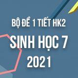 Bộ đề thi giữa HK2 môn Sinh học lớp 7 năm 2021
