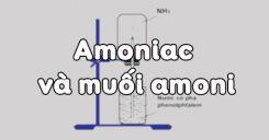Bài 8: Amoniac và muối amoni