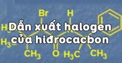 Bài 39: Dẫn xuất halogen của hiđrocacbon