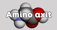 Bài 10: Amino axit