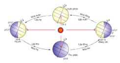 Bài 8: Sự chuyển động của Trái Đất quanh mặt Trời