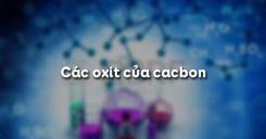 Bài 28: Các oxit của cacbon
