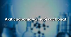 Bài 29 Axit cacbonic và muối cacbonat