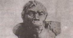 Bài 1: Sự xuất hiện loài người và bầy người nguyên thủy
