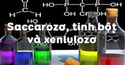 Bài 6: Saccarozơ, Tinh bột và Xenlulozơ