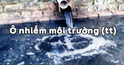 Bài 55: Ô nhiễm môi trường (tiếp theo)