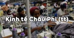 Bài 31: Kinh tế Châu Phi (tiếp theo)