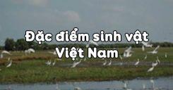 Bài 37: Đặc điểm sinh vật Việt Nam