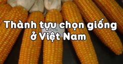 Bài 37: Thành tựu chọn giống ở Việt Nam