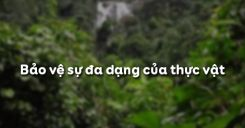 Bài 49: Bảo vệ sự đa dạng của thực vật