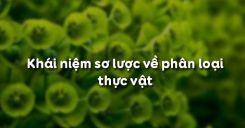 Bài 43: Khái niệm sơ lược về phân loại thực vật
