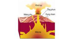 Bài 12: Tác động của nội lực và ngoại lực trong việc hình thành địa hình bề mặt Trái Đất