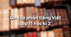 Ôn tập phần tiếng Việt lớp 11 học kì 2