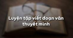 Soạn bài Luyện tập viết đoạn văn thuyết minh - Ngữ văn 10