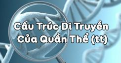 Bài 17: Cấu trúc di truyền và quần thể (tiếp theo)