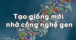 Bài 20: Tạo giống mới nhờ công nghệ gen