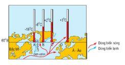 Bài 25: Thực hành Sự chuyển động của các dòng biển trong đại dương