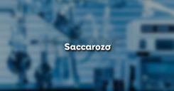 Bài 51: Saccarozơ