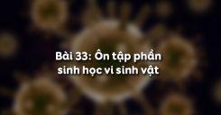 Bài 33: Ôn tập phần sinh học vi sinh vật