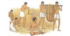 Bài 5: Các quốc gia cổ đại phương Tây