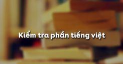 Kiểm tra phần tiếng Việt