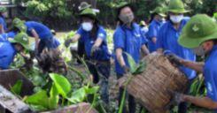 Bài 62: Thực hành Vận dụng Luật bảo vệ môi trường vào việc bảo vệ môi trường ở địa phương