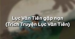 Soạn bài Lục Vân Tiên gặp nạn của Nguyễn Đình Chiểu - Ngữ văn 9