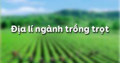 Bài 28: Địa lí ngành trồng trọt