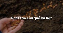Bài 34: Phát tán của quả và hạt