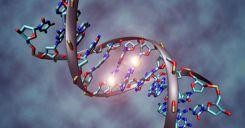 Bài 22: Bảo vệ vốn gen của loài người và một số vấn đề xã hội của di truyền học