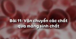 Bài 11: Vận chuyển các chất qua màng sinh chất