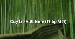 Cây tre Việt Nam - Thép Mới