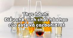 Bài 8: Thực hành Điều chế, tính chất hóa học của Este và Cacbohiđrat