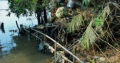 Bài 56-57: Thực hành Tìm hiểu tình hình môi trường ở địa phương