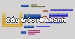 Bài 9: Cấu trúc rẽ nhánh