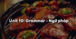 Unit 10: Grammar - Ngữ pháp