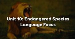 Unit 10: Endangered Species - Language Focus