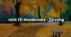 Unit 13: Vocabulary - Từ vựng