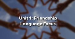Unit 1:  Friendship - Language Focus