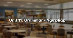 Unit 11: Grammar - Ngữ pháp