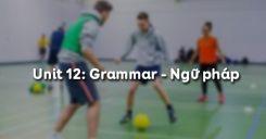 Unit 12: Grammar - Ngữ pháp