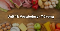 Unit 11: Vocabulary - Từ vựng