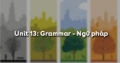 Unit 13: Grammar - Ngữ pháp