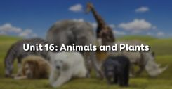 Unit 16: Animals and Plants