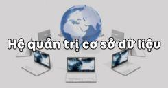 Bài 2: Hệ quản trị cơ sở dữ liệu