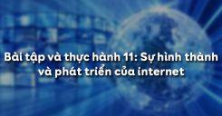 Bài tập và thực hành 11: Sự hình thành và phát triển của internet